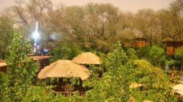 tree house jaipur. LIVING IN THE NEST \u2013 TREE HOUSE, JAIPUR, INDIA Tree House Jaipur